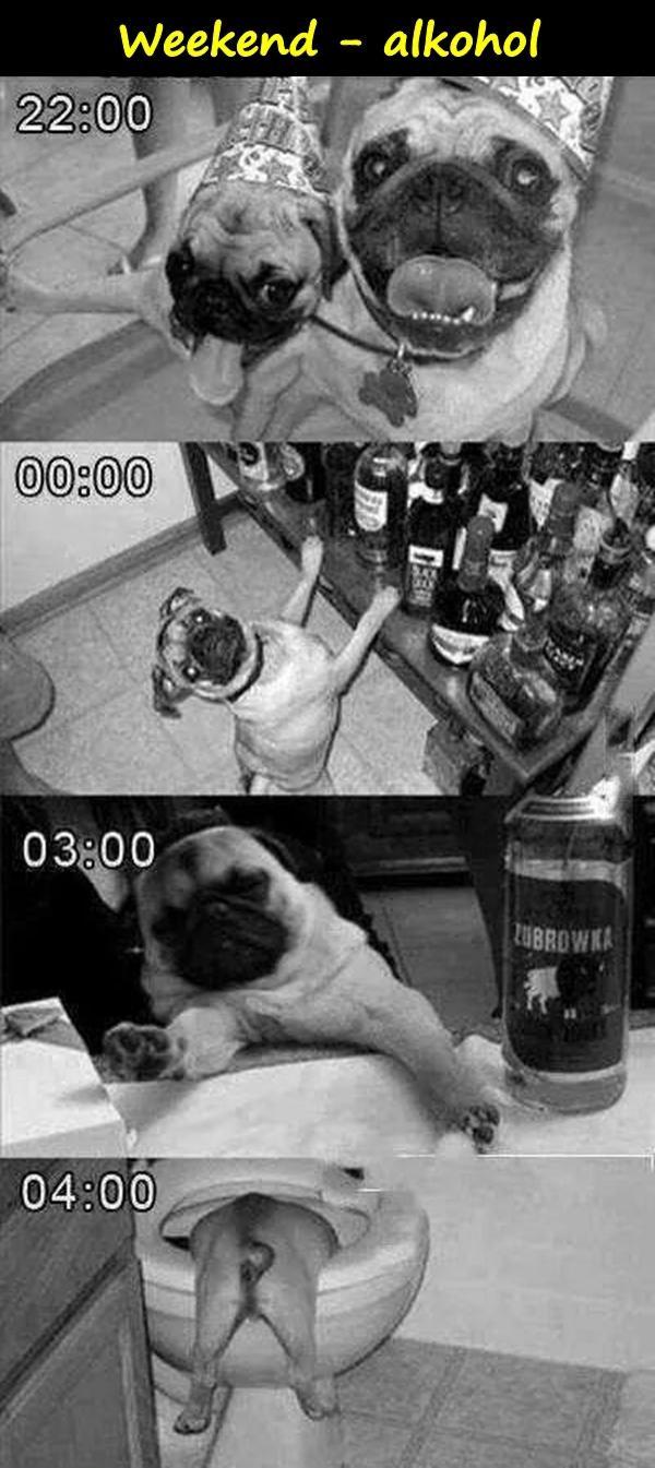 Weekend - alkohol