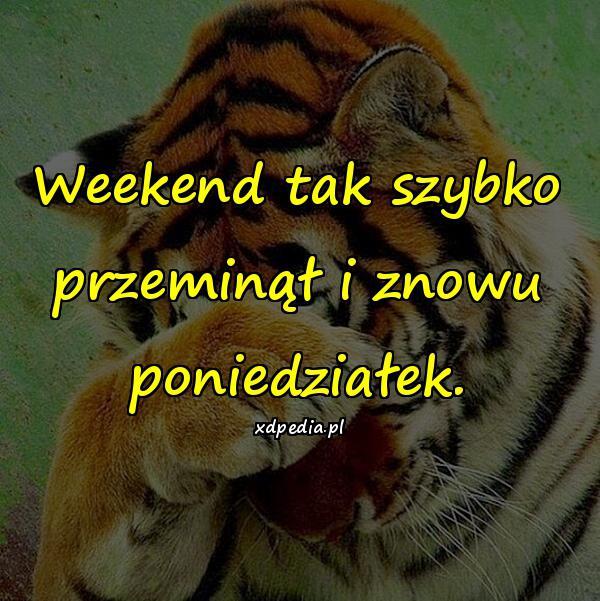 Weekend tak szybko przeminął i znowu poniedziałek.