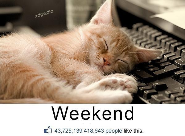 Weekend - wszyscy lubią, polub i Ty!