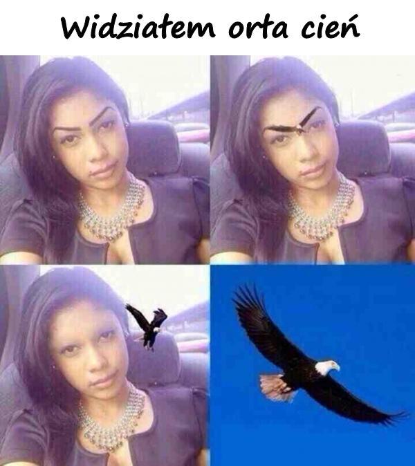 Widziałem orła cień