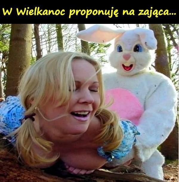 W Wielkanoc proponuję na zająca...