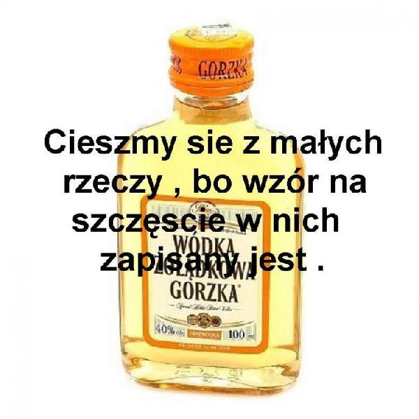 [Obrazek: wodka_gorzka_cieszymy_sie_z_malych_2013-...middle.jpg]