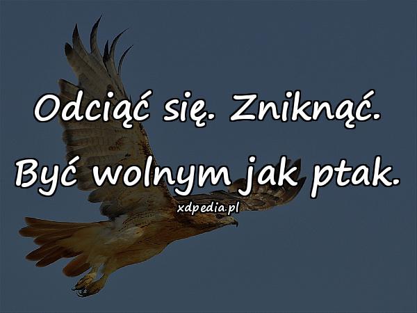 Odciąć się. Zniknąć. Być wolnym jak ptak.