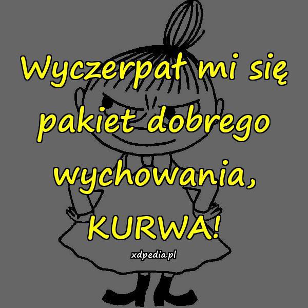 Wyczerpał mi się pakiet dobrego wychowania, KURWA!