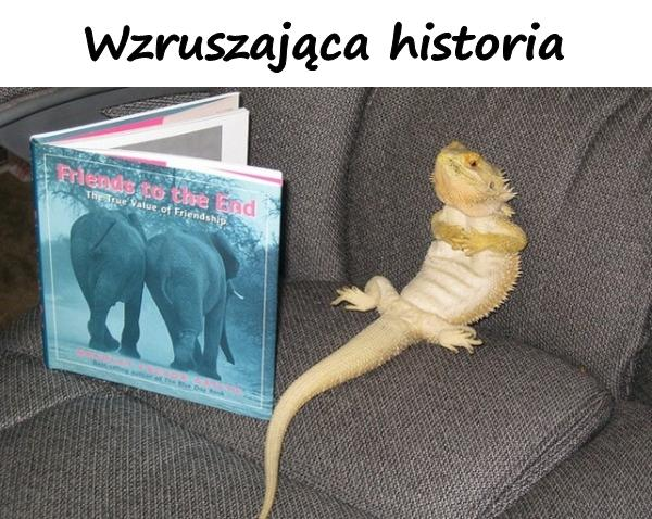 Wzruszająca historia