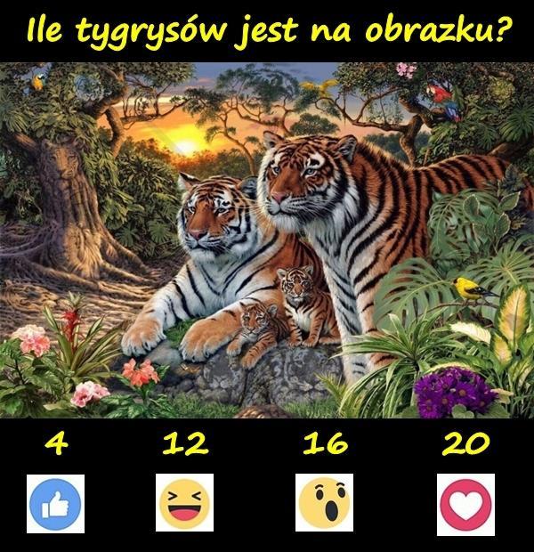 Ile tygrysów jest na obrazku?