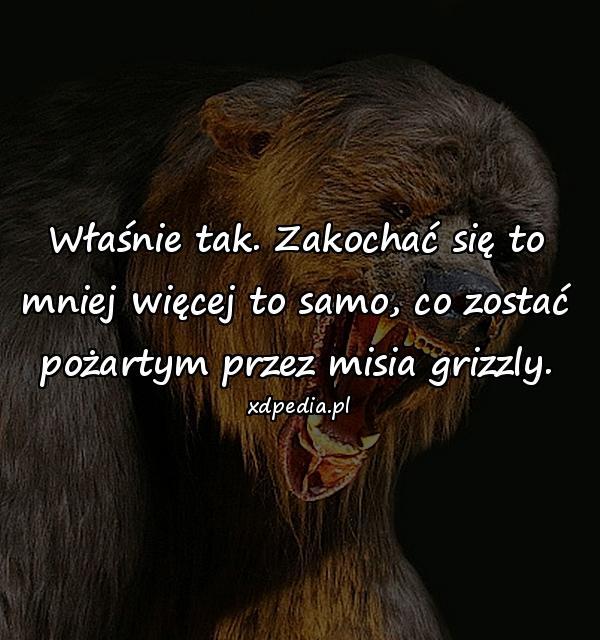 Właśnie tak. Zakochać się to mniej więcej to samo, co zostać pożartym przez misia grizzly.