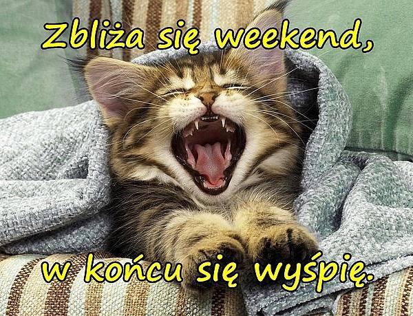 Zbliża się weekend, w końcu się wyśpię.