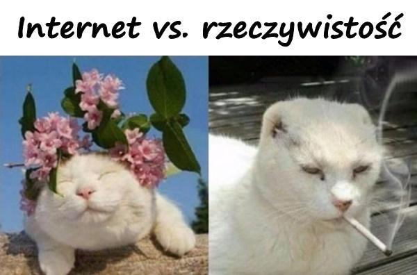 Zdjęcie - Internet vs. rzeczywistość