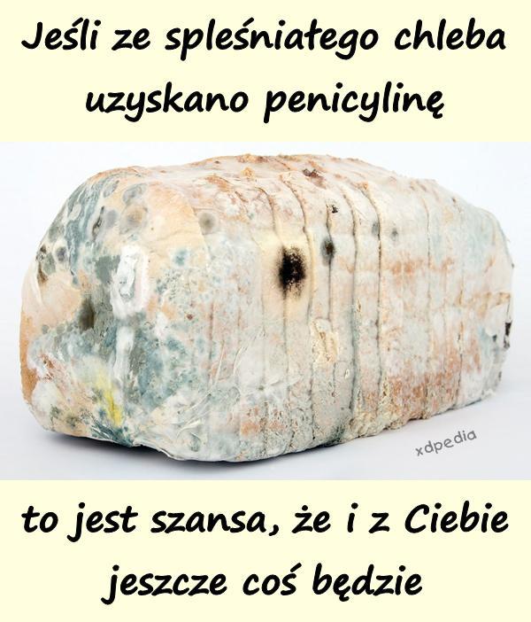 Jeśli ze spleśniałego chleba uzyskano penicylinę, to jest szansa, że i z Ciebie jeszcze coś będzie