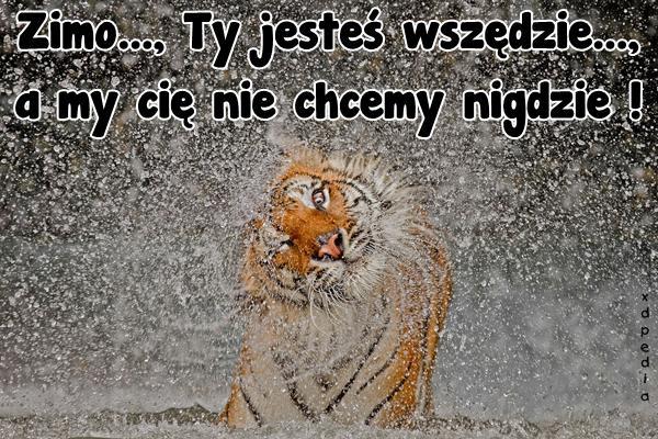 Zimo..., Ty jesteś wszędzie...