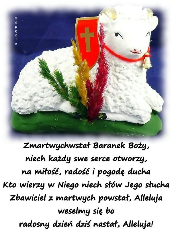 Wielkanoc Na Facebooka Wiersze Wierszyki Memy święta