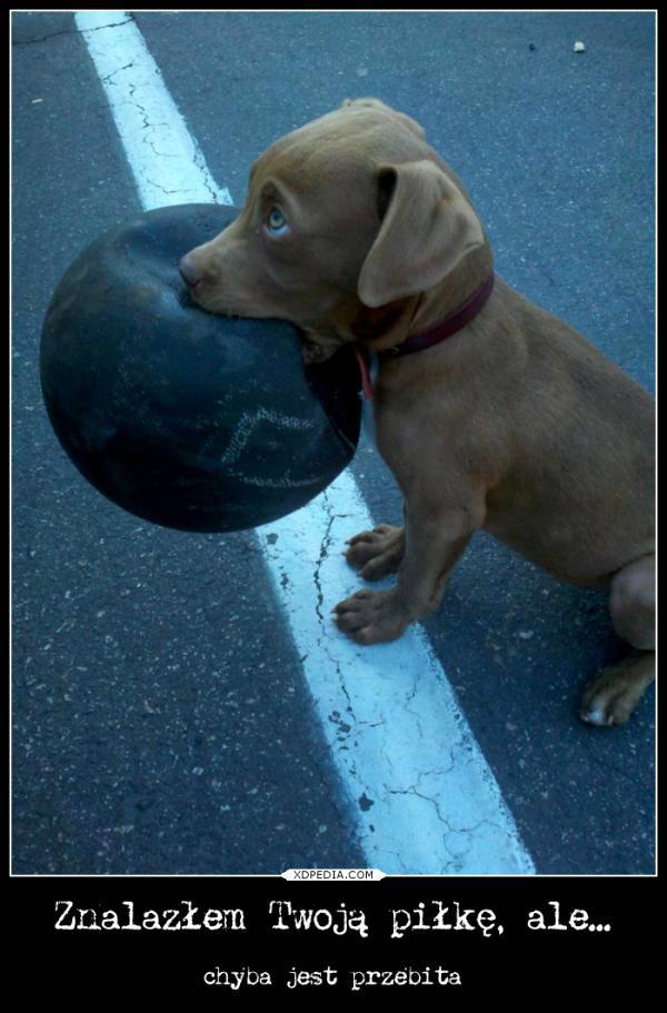Znalazłem Twoją piłkę, ale chyba jest przebita