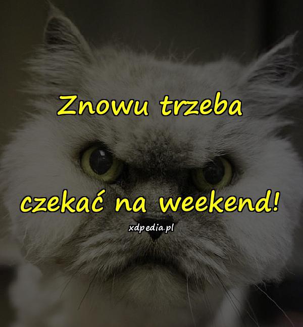 Znowu trzeba czekać na weekend!