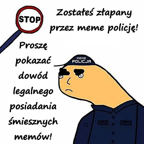 Zostałeś złapany przez meme policję! Proszę pokazać dowód legalnego posiadania śmiesznych memów!