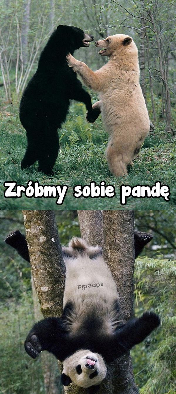 Zróbmy sobie pandę