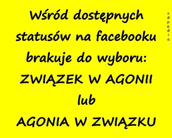 Wśród dostępnych statusów na facebooku brakuje do wyboru: ZWIĄZEK W AGONII lub AGONIA W ZWIĄZKU