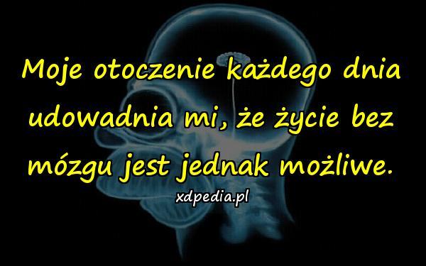 Moje otoczenie każdego dnia udowadnia mi, że życie bez mózgu jest jednak możliwe.