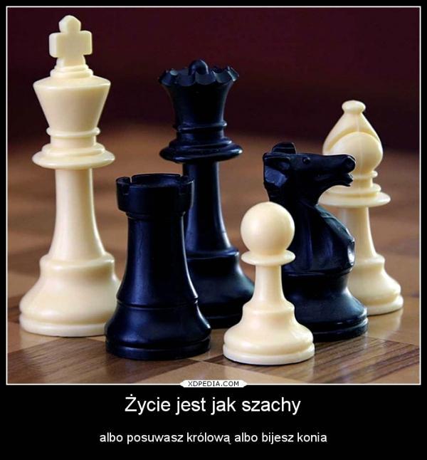 Życie jest jak szachy albo posuwasz królową albo bijesz konia