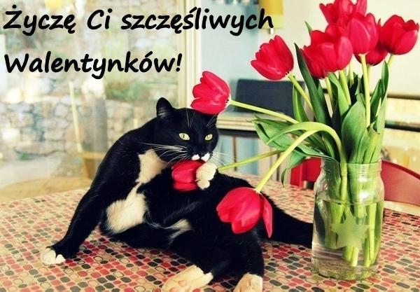 Życzę Ci szczęśliwych Walentynków!