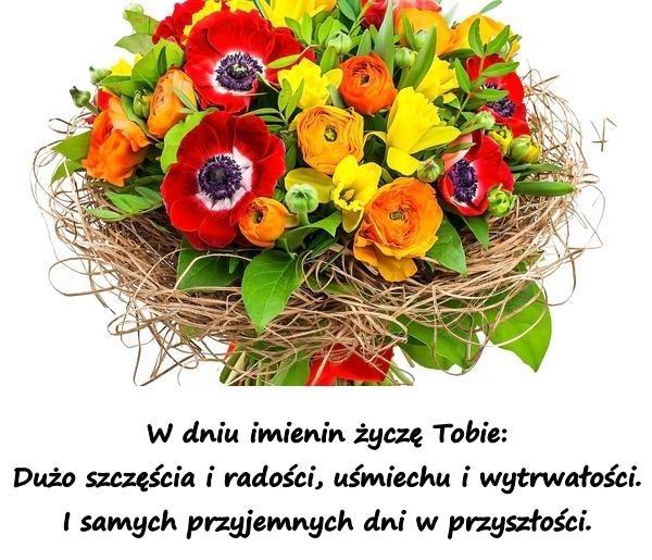 W dniu imienin życzę Tobie: Dużo szczęścia i radości, uśmiechu i wytrwałości. I samych przyjemnych dni w przyszłości.