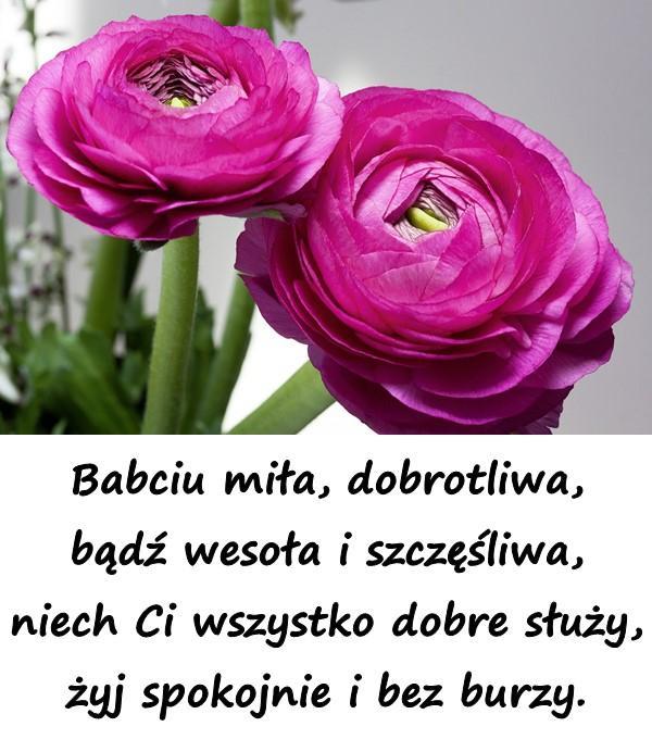 Babciu miła, dobrotliwa, bądź wesoła i szczęśliwa, niech Ci wszystko dobre służy, żyj spokojnie i bez burzy.