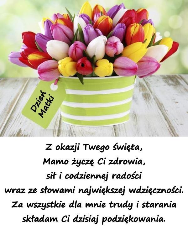 Z okazji Twego święta, Mamo życzę Ci zdrowia, sił i codziennej radości wraz ze słowami największej wdzięczności. Za wszystkie dla mnie trudy i starania składam Ci dzisiaj podziękowania.