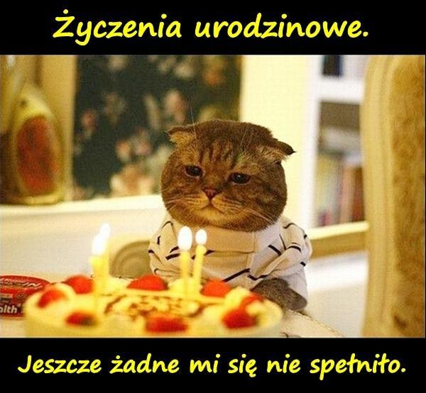 Życzenia urodzinowe. Jeszcze żadne mi się nie spełniło.