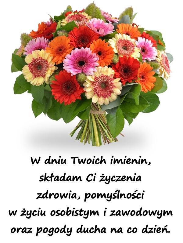 W dniu Twoich imienin, składam Ci życzenia zdrowia, pomyślności w życiu osobistym i zawodowym oraz pogody ducha na co dzień.