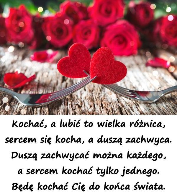 Kochać, a lubić to wielka różnica, sercem się kocha, a duszą zachwyca. Duszą zachwycać można każdego, a sercem kochać tylko jednego. Będę kochać Cię do końca świata.