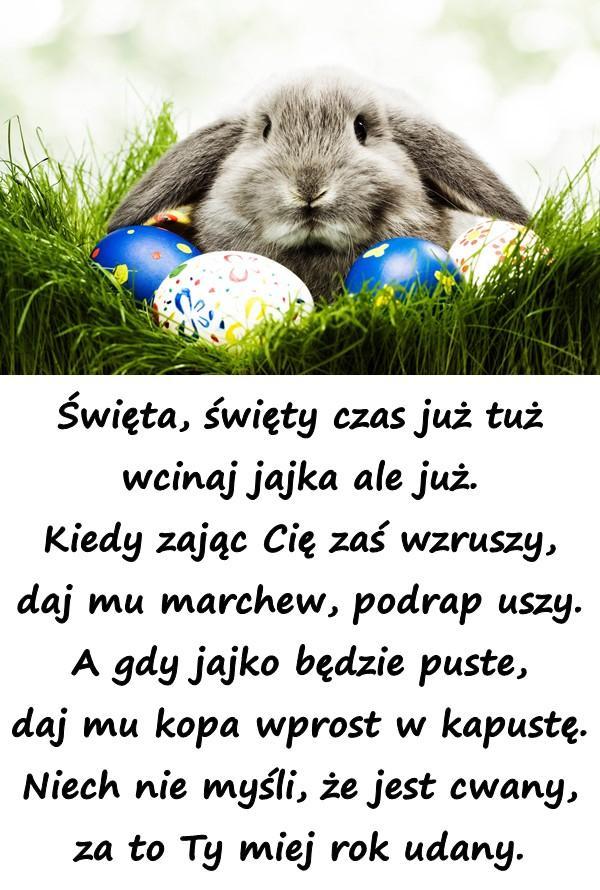 Święta, święty czas już tuż wcinaj jajka ale już. Kiedy zając Cię zaś wzruszy, daj mu marchew, podrap uszy. A gdy jajko będzie puste, daj mu kopa wprost w kapustę. Niech nie myśli, że jest cwany, za to Ty miej rok udany.