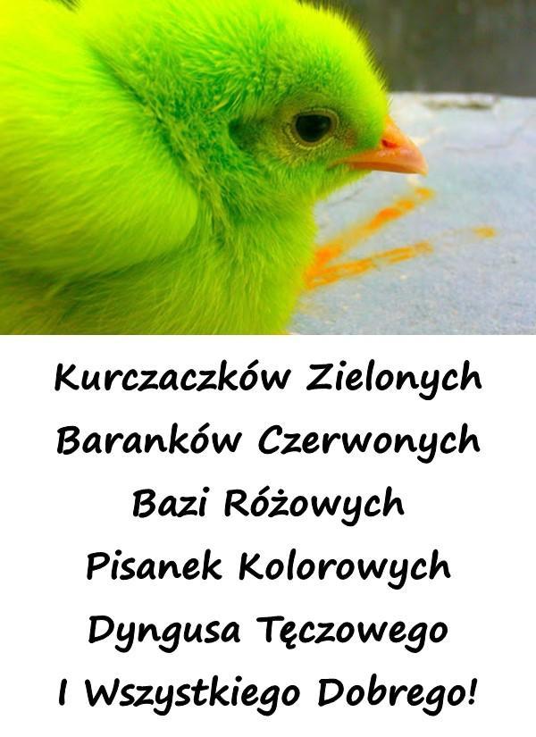 Kurczaczków Zielonych Baranków Czerwonych Bazi Różowych Pisanek Kolorowych Dyngusa Tęczowego I Wszystkiego Dobrego!