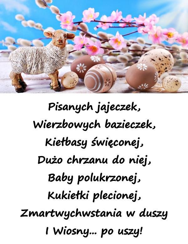 Pisanych jajeczek, Wierzbowych bazieczek, Kiełbasy święconej, Dużo chrzanu do niej, Baby polukrzonej, Kukiełki plecionej, Zmartwychwstania w duszy I Wiosny... po uszy!