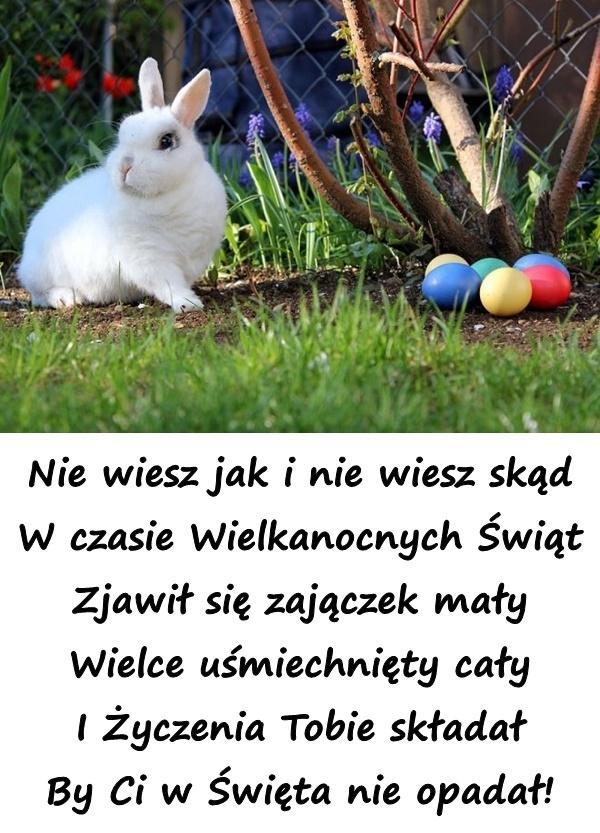 Nie wiesz jak i nie wiesz skąd W czasie Wielkanocnych Świąt Zjawił się zajączek mały Wielce uśmiechnięty cały I Życzenia Tobie składał By Ci w Święta nie opadał!