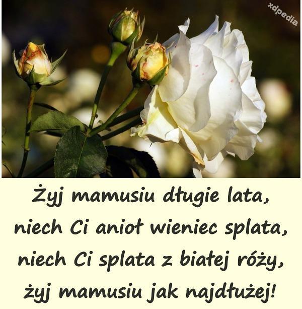 Żyj mamusiu długie lata, niech Ci anioł wieniec splata, niech Ci splata z białej róży, żyj mamusiu jak najdłużej!
